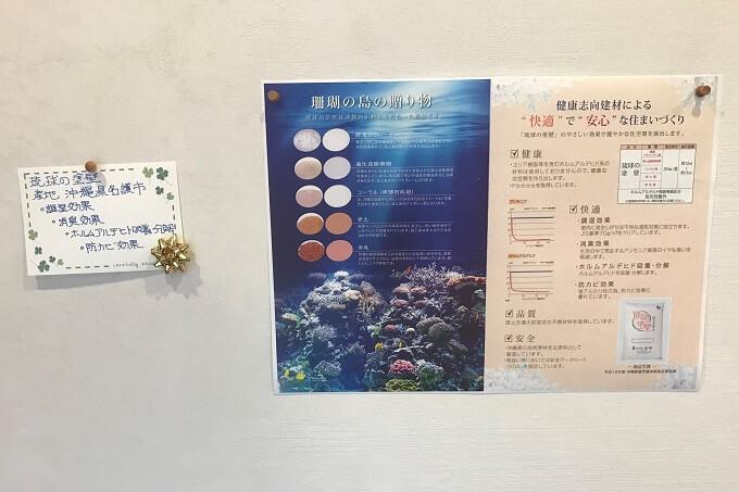 サンゴの説明