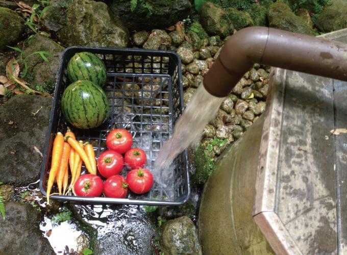 井戸の水で洗われる野菜