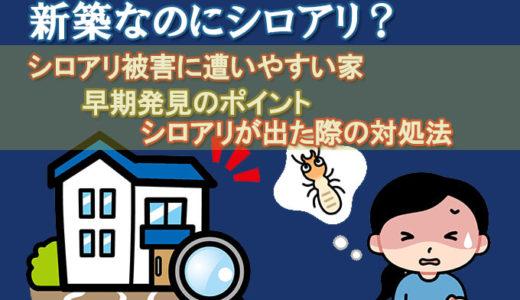 新築なのにシロアリ?シロアリ被害に遭いやすい家や対処法を紹介